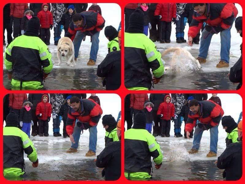 Wilbraham Police Polar Plunge puppy push