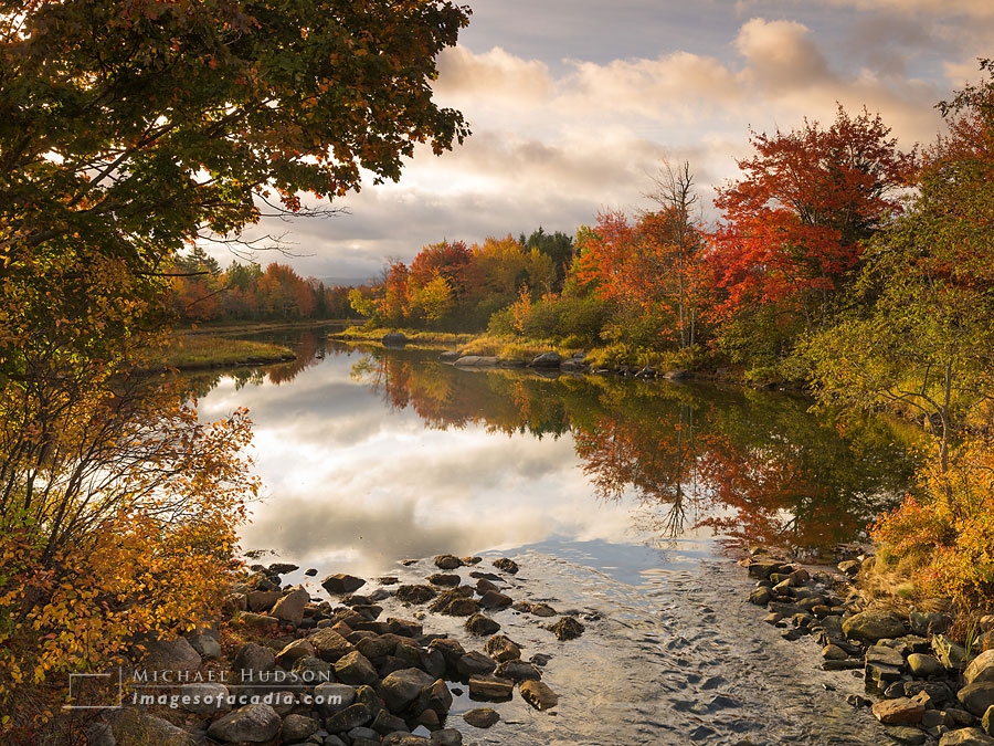 Autumn Foliage, Northeast Creek, Mount Desert Island, Maine, USA