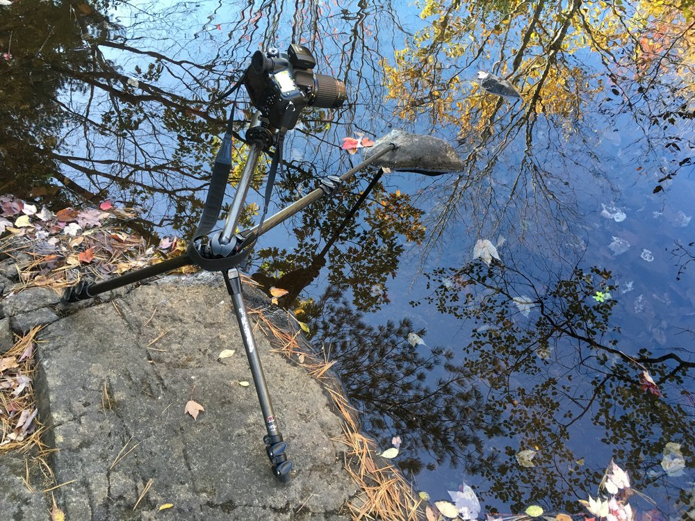 Choose a tripod with legs that extend outward as well as just up and down. Mine has a center post that extends outward too, allowing me to place the camera out beyond the legs and position it in hard to reach places, like out over this small stream at Duck Brook.