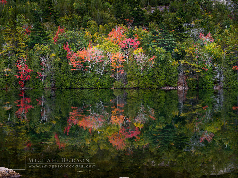 Autumn foliage reflected in the still waters of Bubble Pond, Aca