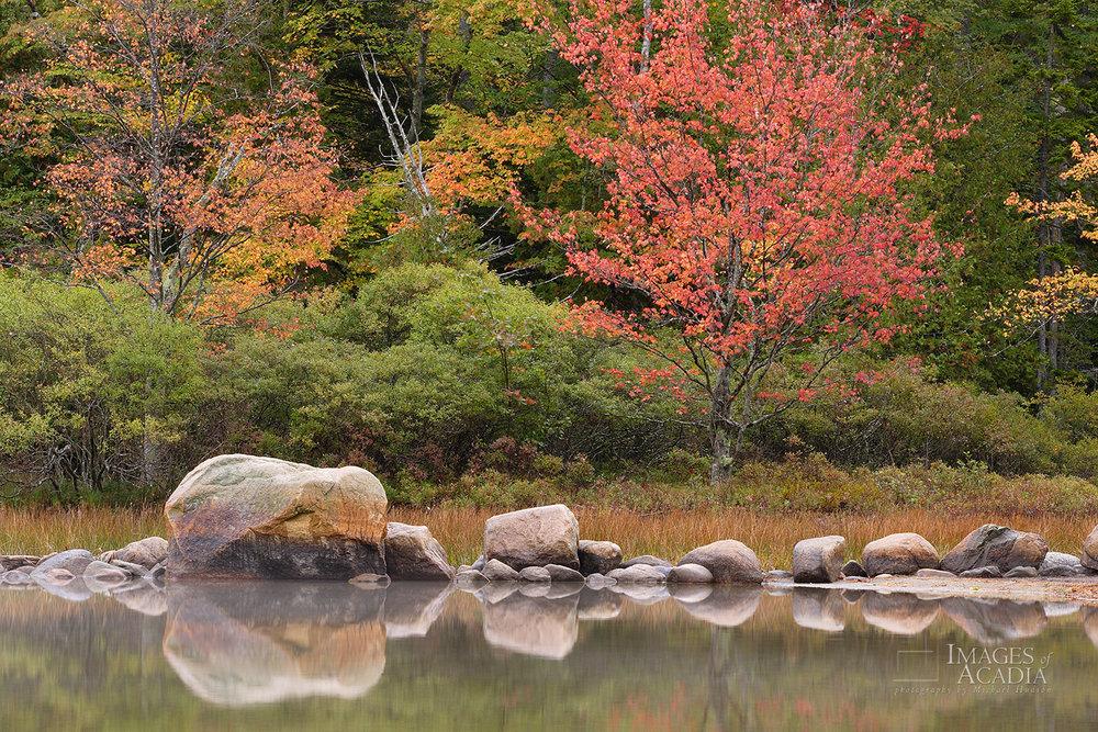 Rocks Reflected in Echo Lake