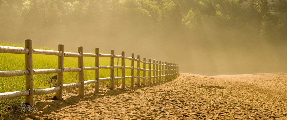 Fence at Sand Beach