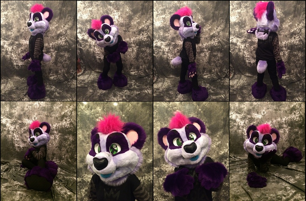 Harley the Panda