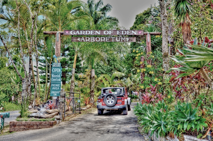 """""""Image found in google""""    Was closed by the time we got there. Some Jurassic Park scenes were shot in this garden."""