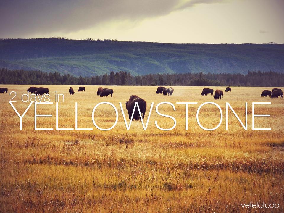 2Days_Yellowstone.JPG