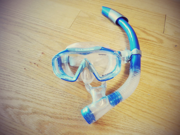 Snorkeling is basically what you are going to do all day long. bring your gear!