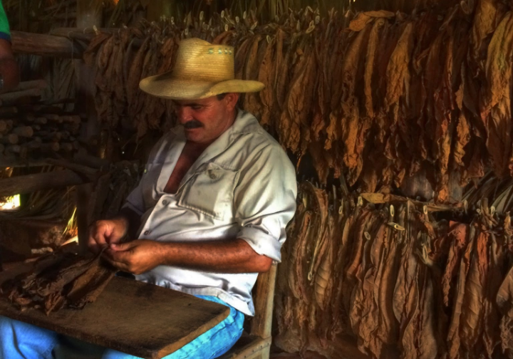 Learn how to make and smoke a real cuban cigar. If you are planning to buy some as a souvenir, you will find cheaper outside the city.