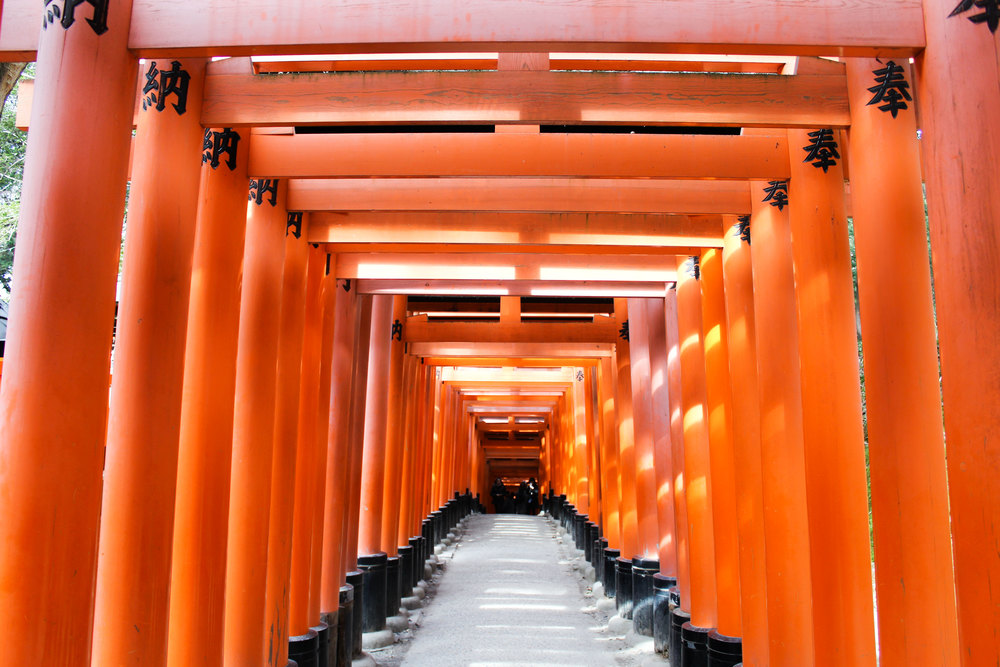 The famous red arches in Kyoto are definitely orange and not red