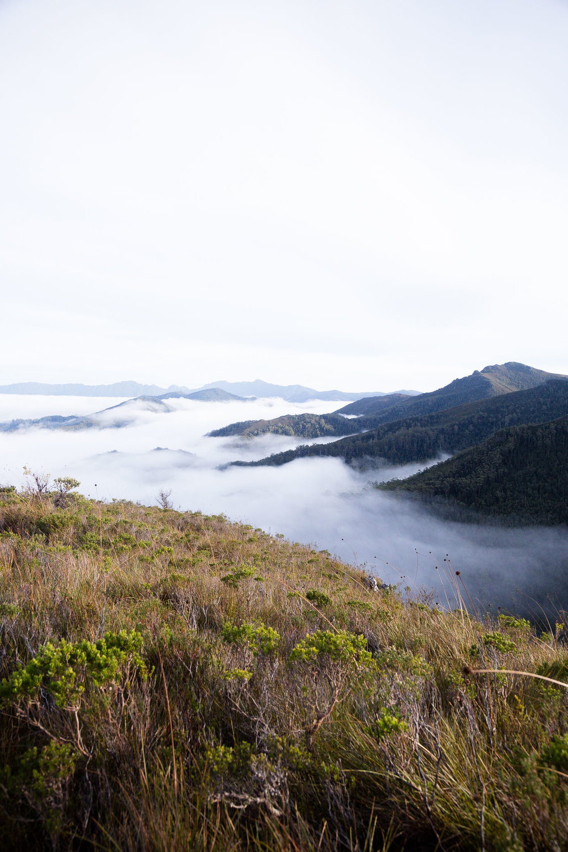 Up above the clouds - Mount Eliza track, Southwest National Park