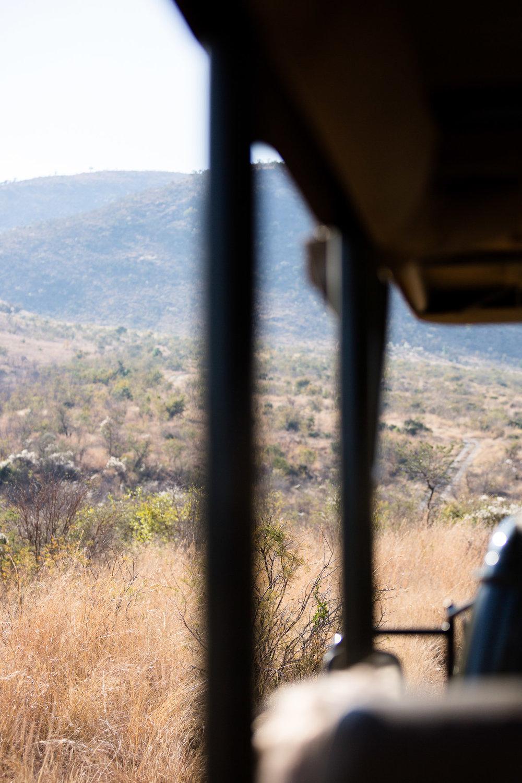 Africa Pilanesberg-12.jpg