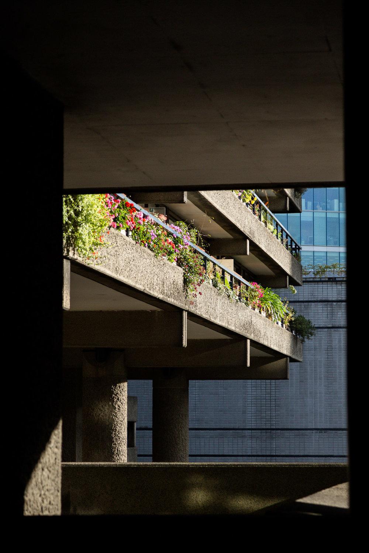 London-69.jpg