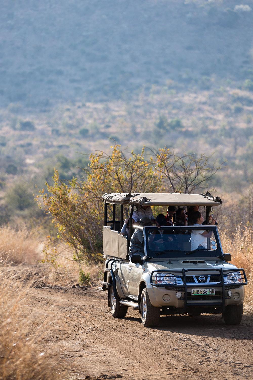 Africa Pilanesberg-27.jpg