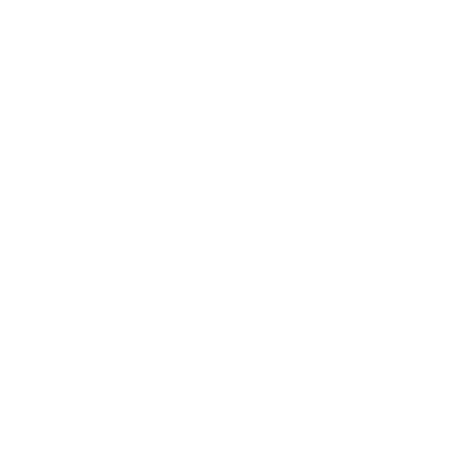 Ron Ramos New York