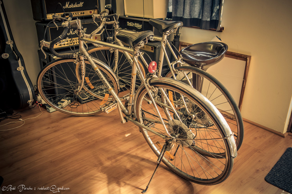 Two silver and nearly identical Ricardos in my lounge. The left Ricardo became my project bicycle.