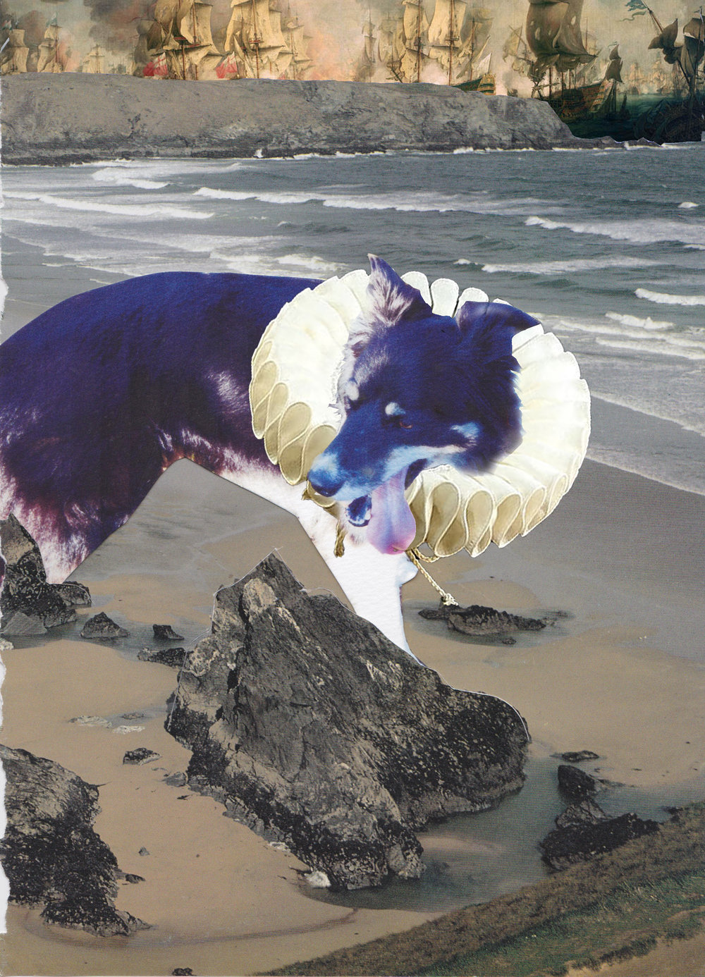 dog-ruff-collage-granite-glitter-beach-cornwall-art-ships-naval-rocks-animal