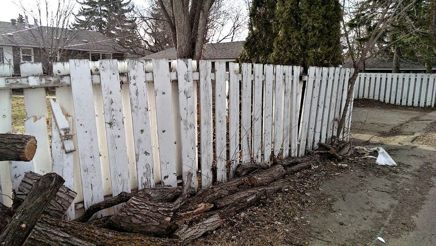 Fence - Before .png
