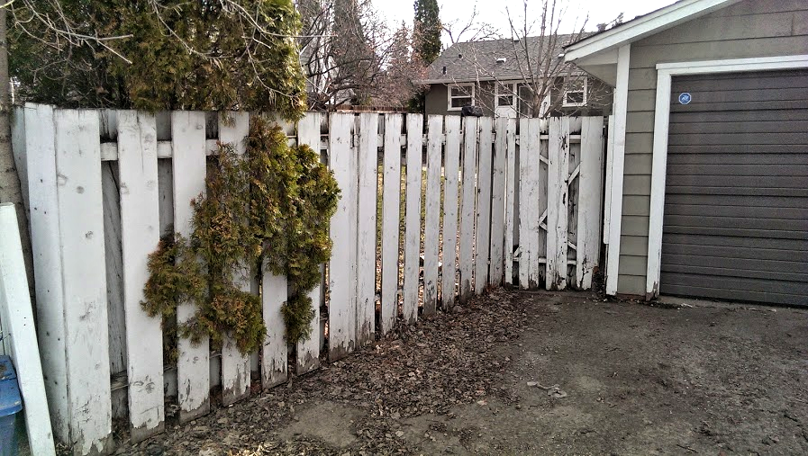 Fence - Before.png