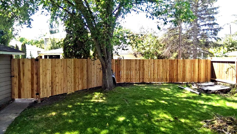 Fence - Cedar.png