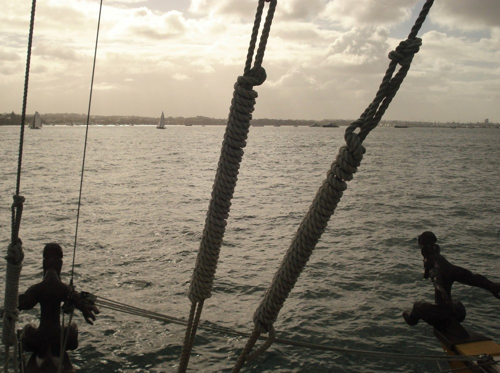 Sailing in Auckland Harbour with Te Matau a Māui Voyaging Trust. Photo credit: Claire Baker