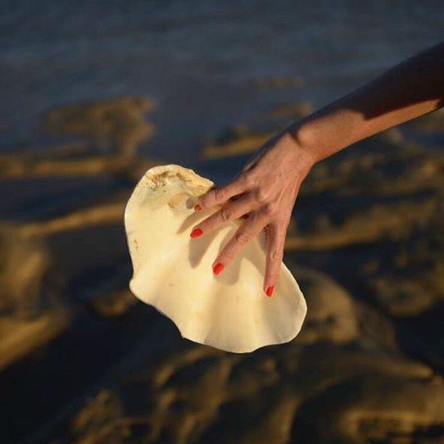 🐚🐚Beautiful image  via @loq ⠀⠀⠀⠀⠀⠀⠀⠀⠀ ⠀⠀⠀⠀⠀⠀⠀⠀⠀ . ⠀⠀⠀⠀⠀⠀⠀⠀⠀ #ziahswimwear #bathingsuits #bathingsuit #swimwear #australianswimwear #brazil #spain
