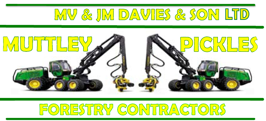 MV & JM DAVIES & SON