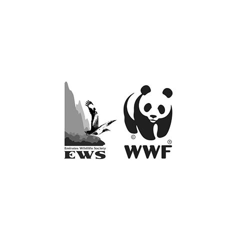 EWS WWF.png