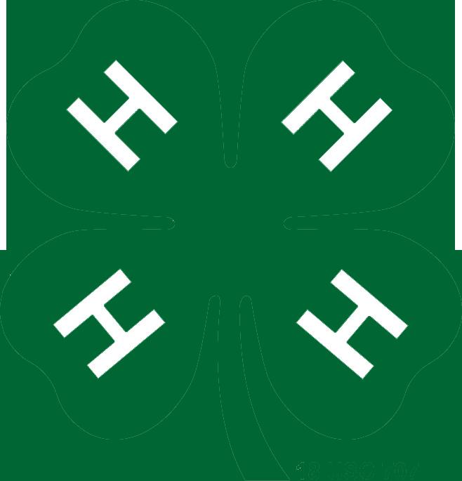 Image result for 4-H clip art