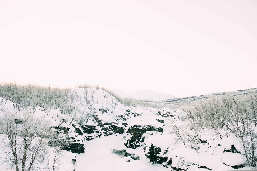Lapland-Caro372.jpg