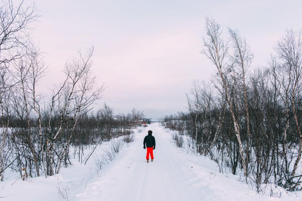 Lapland-Caro515.jpg