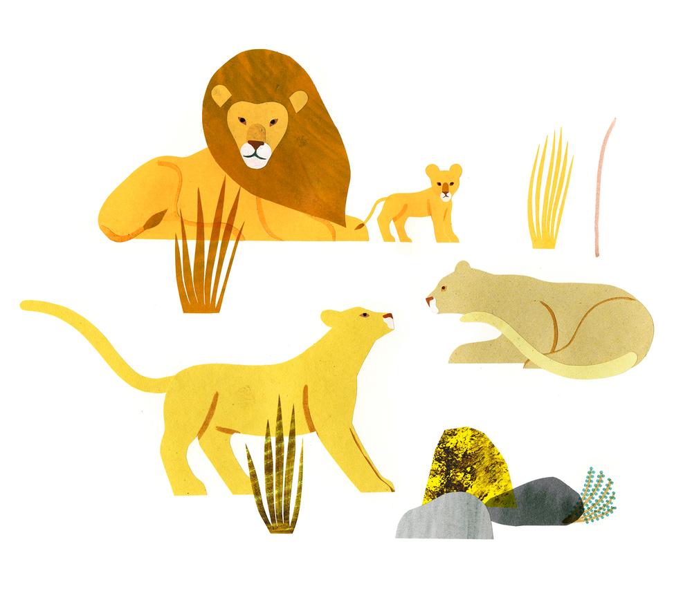lions copie.jpg