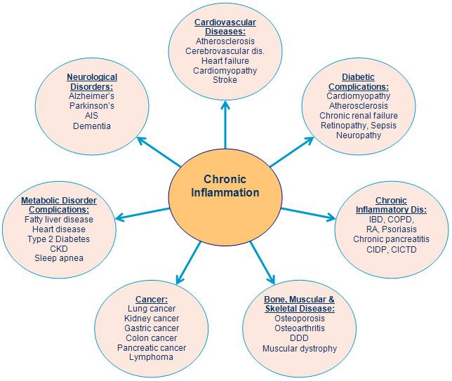 Chronic_Inflammatory_.jpg