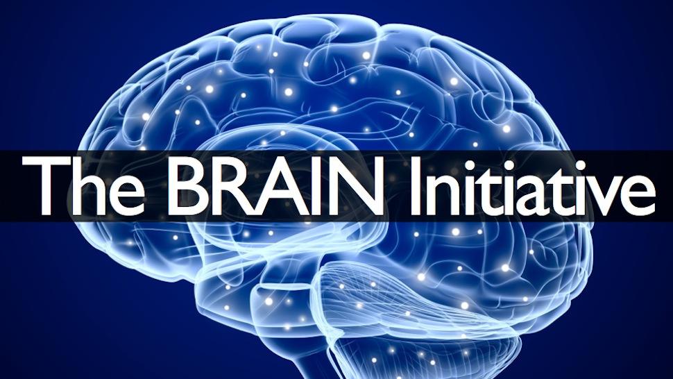 Brain Initiative.jpg