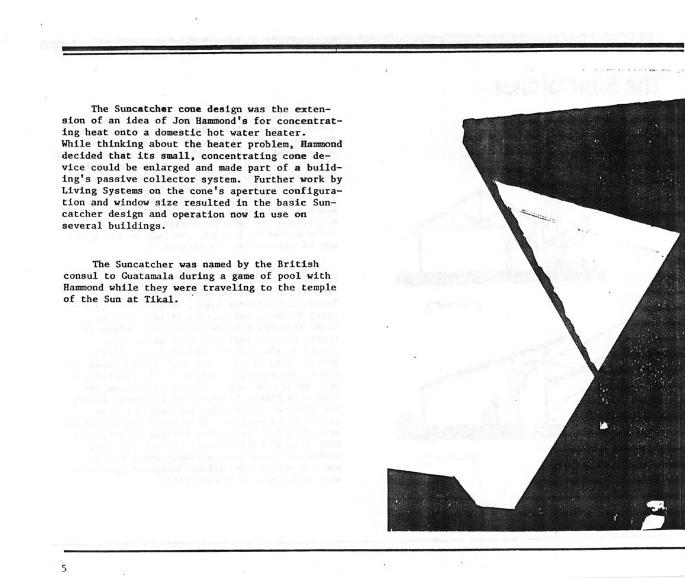 CoolPool-LivingSystems_1981_Page_008.jpg