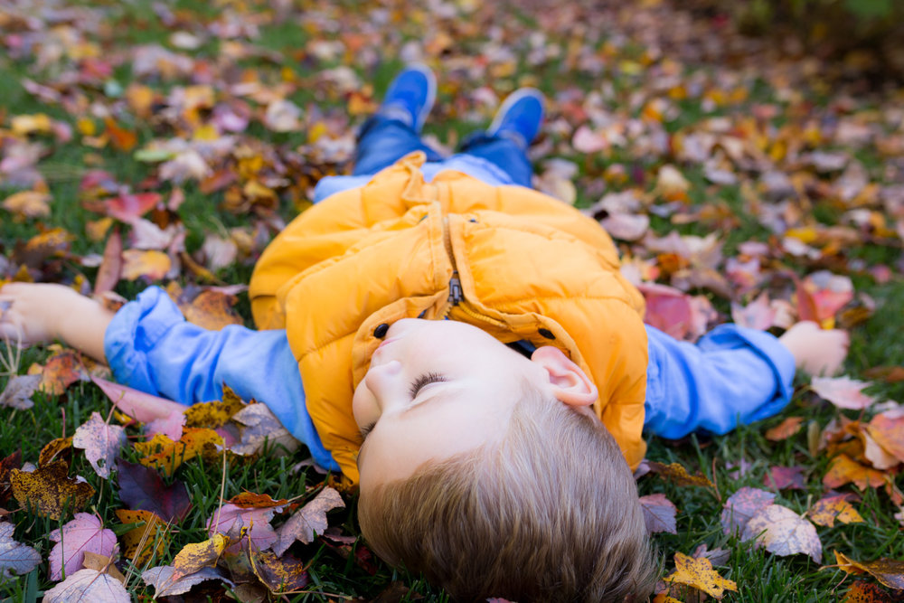 little boy laying in the leaves
