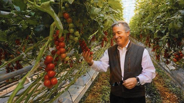 Chicago Tribune - Inspired by grandfather, former North Shore resident grows tomatoes year-round: 5/12/17