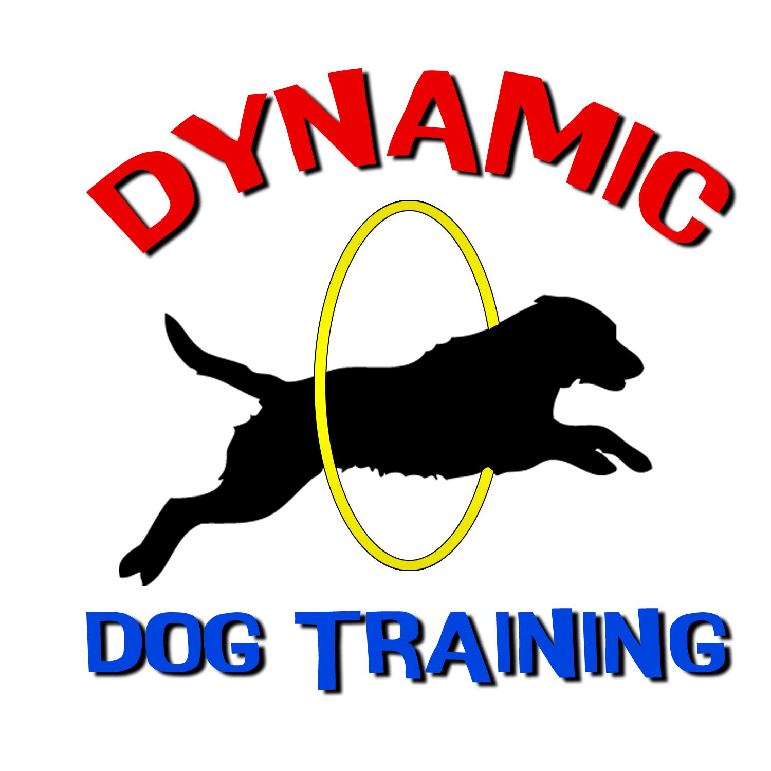 Dynamic Dog Training