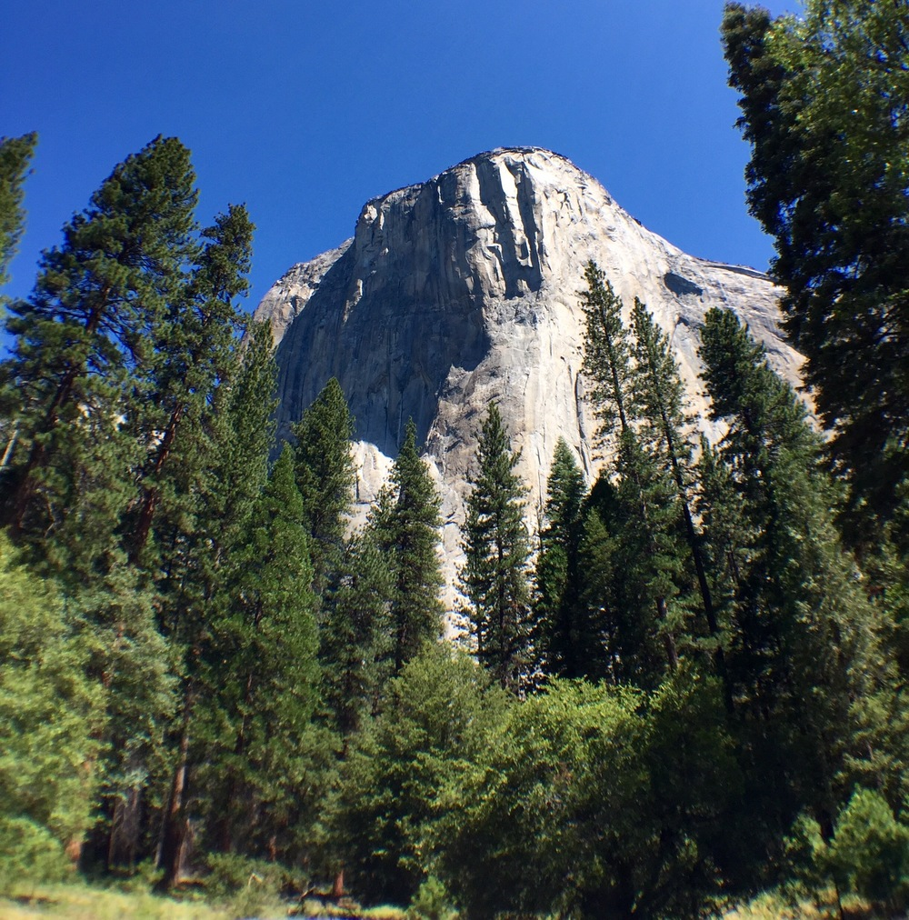 Another angle on El Capitan.  That's almost 3,000' up from where we were.