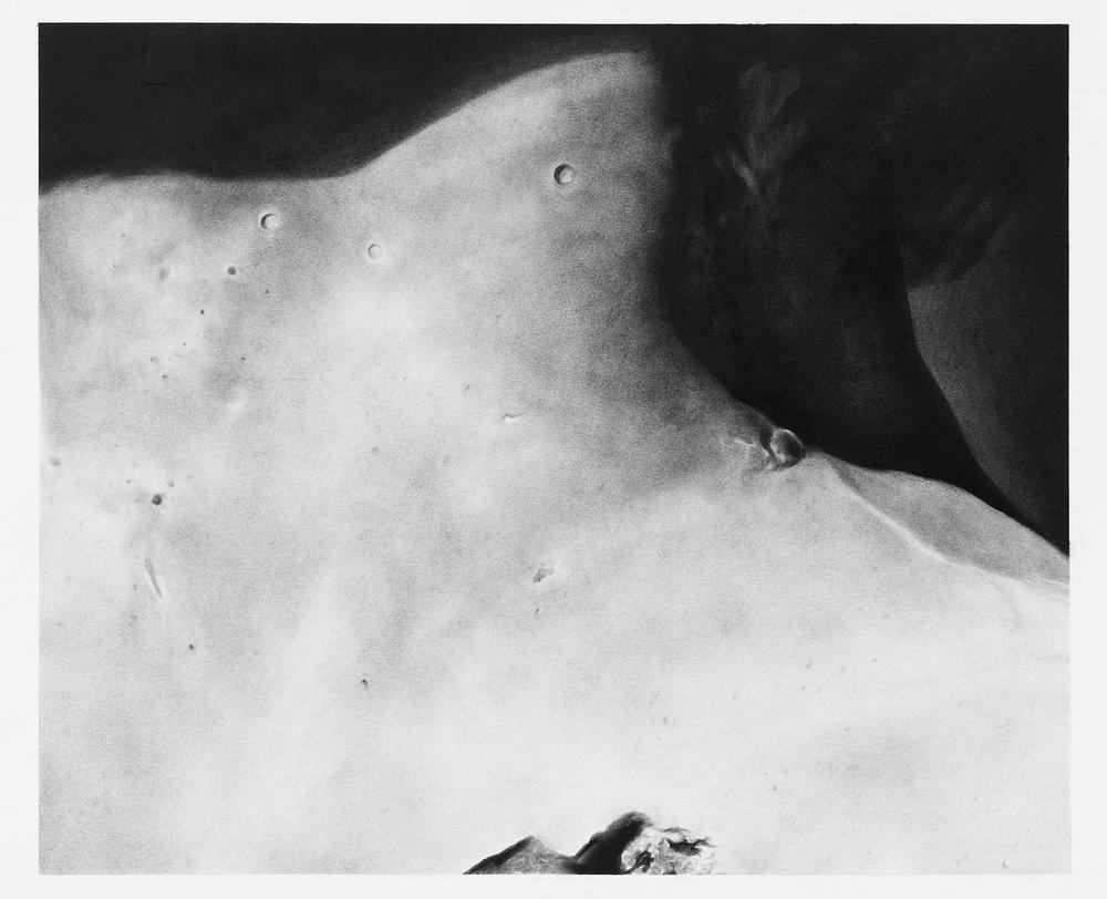 Fragment ( Neck Ⅰ )  2017 Charcoal on paper 45x55 cm Photograph by Masaki Ogawa