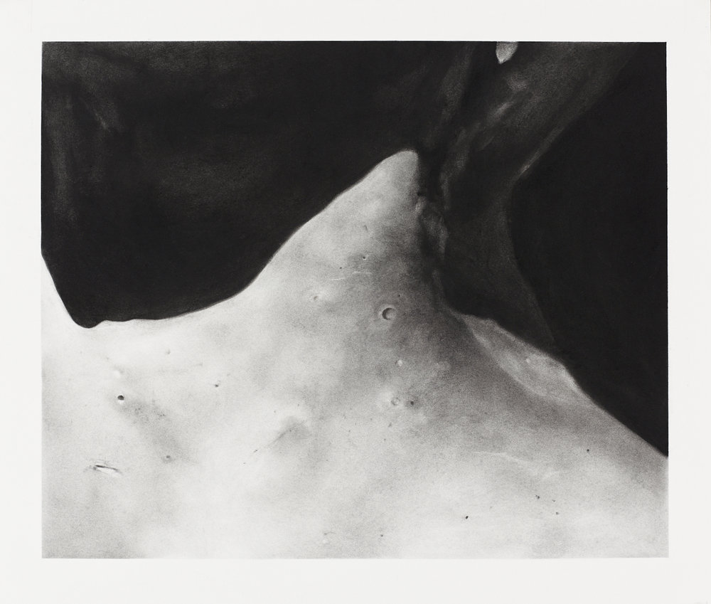 Fragment (Neck III)    Charcoal on paper 54x60cm 2017