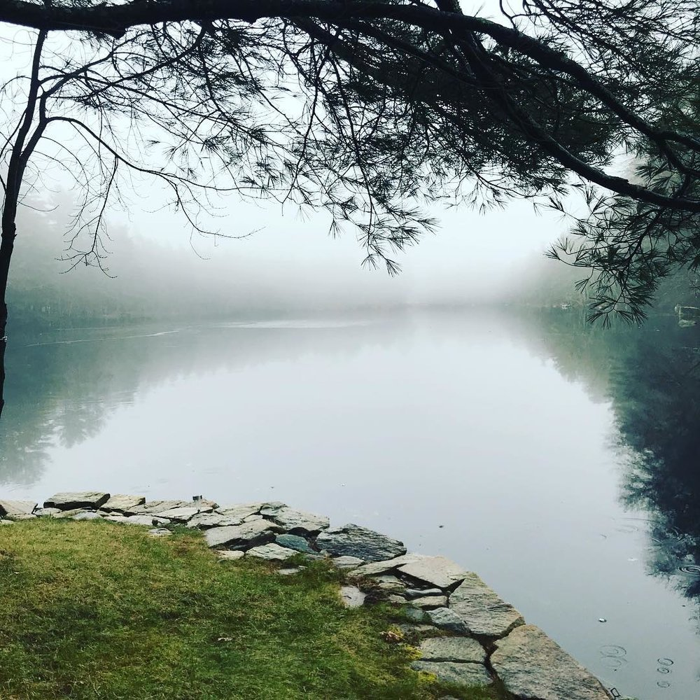 Still Waters Pond, January 2019