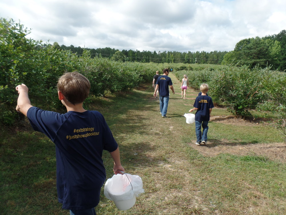 There were so many blueberries. We grabbed the buckets and hiked through the field.