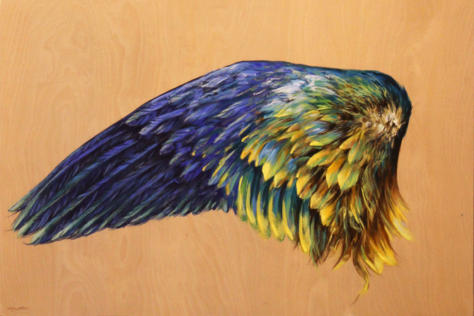Yellow and Blue Parrot Wing