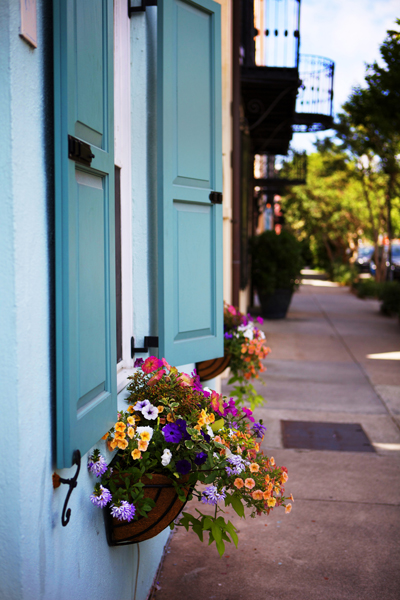 Everywhere you look, beautiful window boxes and colorful shutters!