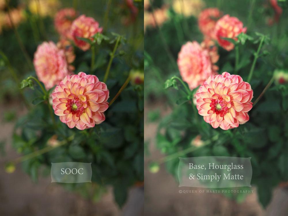 BA flower.jpg