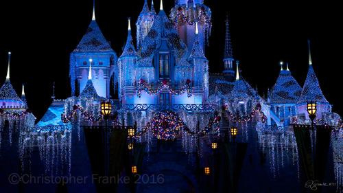 blue castle feb 9 2016 tony carnevale - Blue Castle 2016