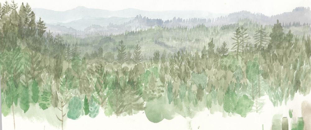 Mendocino Mountain Range, CA