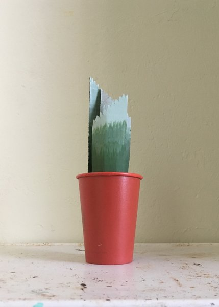 Hypothetical Cactus 1