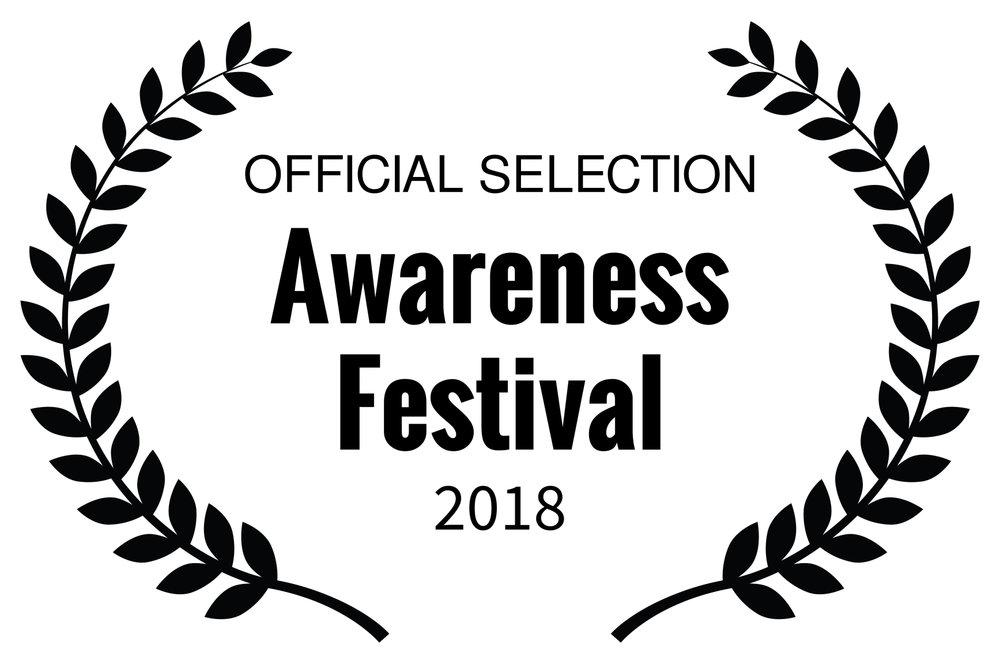 Awareness Festival jpg.jpg