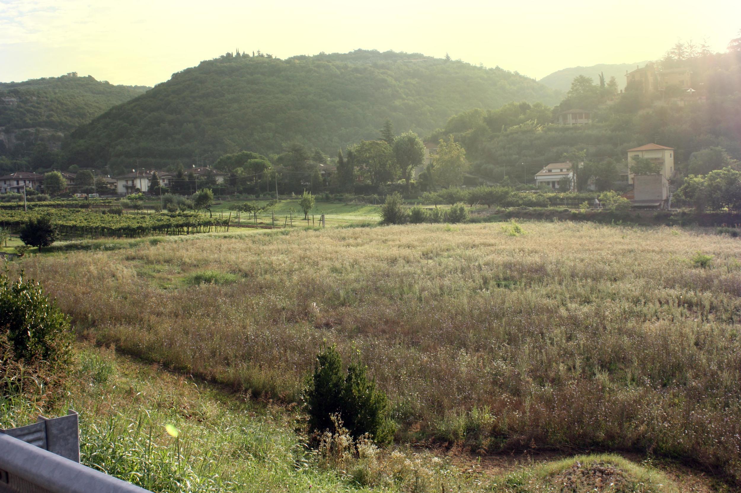 landscape_avesa