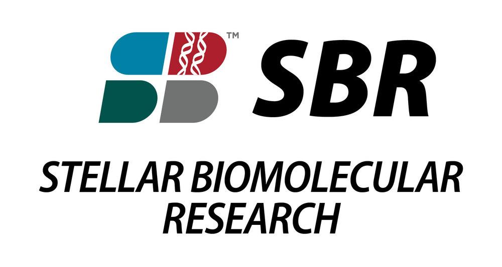Stellar biomolecular research raadfest.jpg